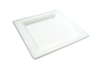 Square Plate 20x20cm Bagasse - Vegware - Pack or Carton