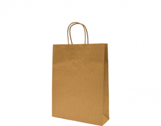 Paper Carry Bag with Twisted Paper Handle, Small, Brown - Castaway