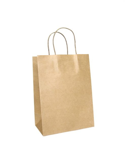 Twisted Handle Paper Bags Small (205+115)x270
