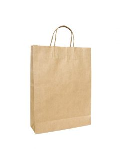 Twisted Handle Paper Bags Medium (260+120)x360