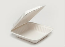 Clam Tray Sugar Cane 20x21cm - Vegware - Pack & Carton