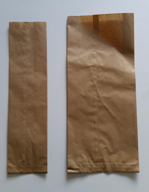 Bottle Paper Bag Large - Fortune
